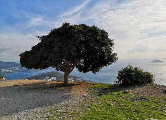 Turkey Western Lycian Trail